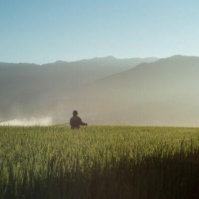 Blog Post_ Cambodia Farmers (1)