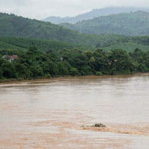 The unique ecosystems of the Mekong River, flowing between Chiang Khong and Huay Xai, include rapids, islets, rocky areas, and sandy river beaches. The Chinese government plans to clear rapids and islets from the Mekong River to allow ships carrying up to 500 tons to travel from southern China to Myanmar, Thailand, and Laos.