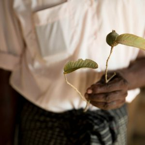 Myanmar Human Rights Violations Thilawa