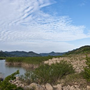 Farmland along a tributary of the Mekong River, imperiled by a nearby dam.