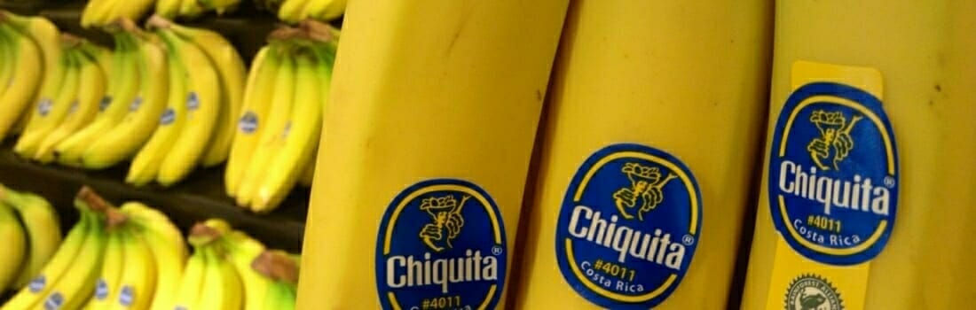 In Search of an Ethical Banana
