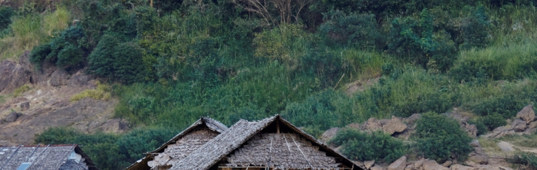 World Development Day: Ignoring the Human Cost
