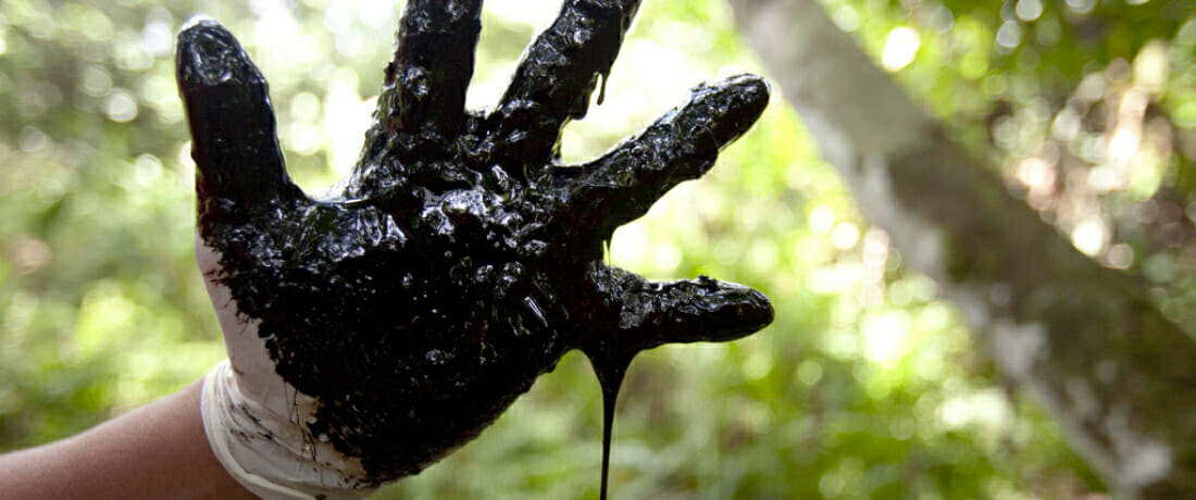 No Colors Left, the Amazon is Painted Black