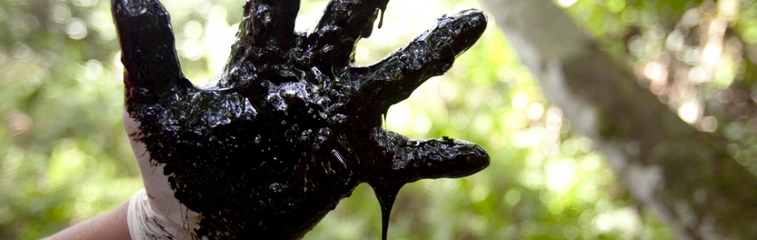 ERI ante la CIDH: Derrames de petróleo en la Amazonia amenazan vidas y futuros