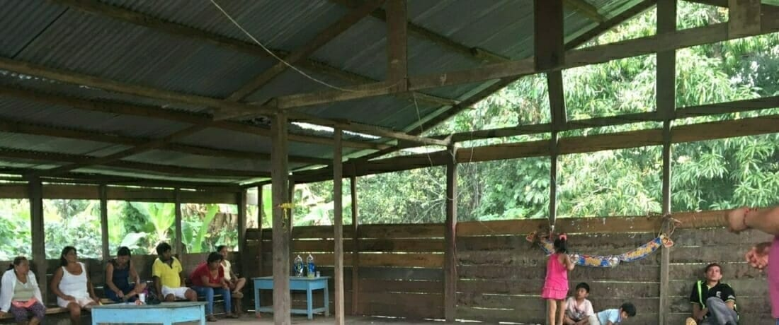 Have we Learned from the Past? Indigenous People Living in Voluntary Isolation in the Peruvian Amazon.
