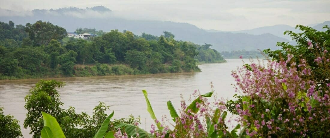 From the Amazon to the Mekong: Celebrating Rivers for World Rivers Day