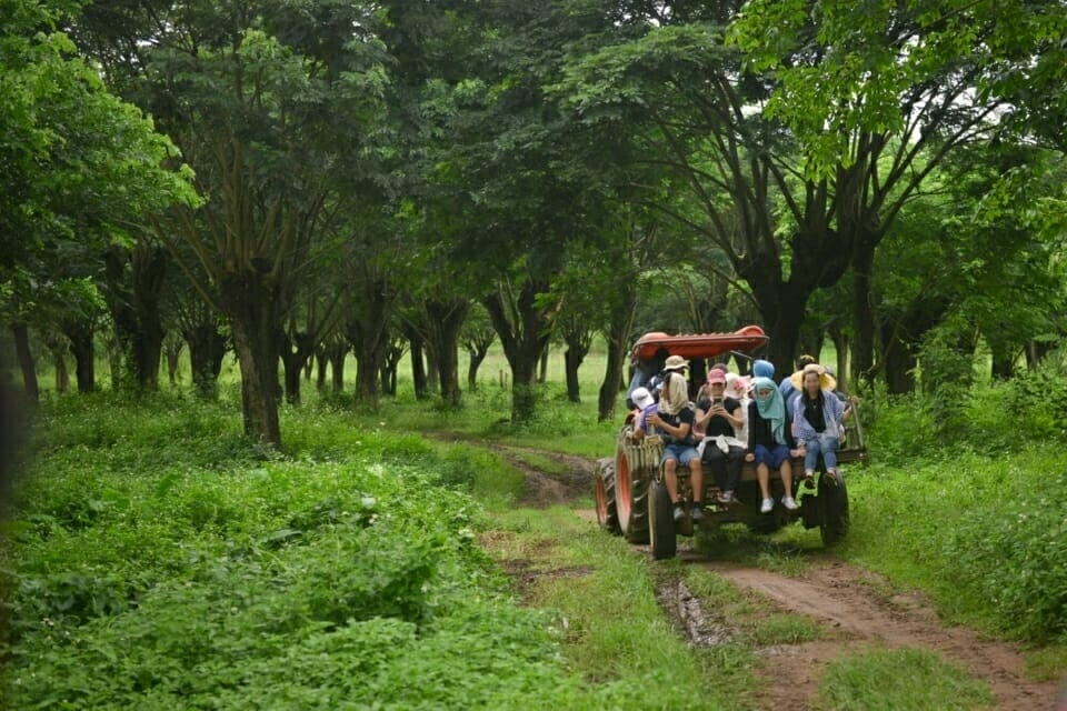 EarthRights School students traveled with villagers in Ban Haeng, Thailand by tractor to  the areas near their village where lignite coal has been found. The coal deposits are in and around the villagers' farms.