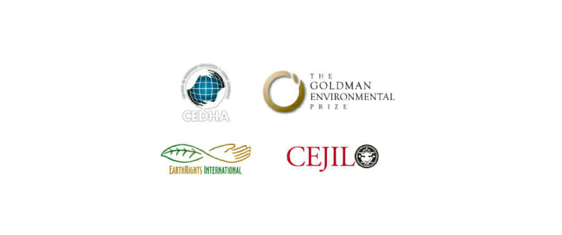 Líderes de Derechos Humanos Presentan Amicus Curiae en Caso de Activista Ambiental Indígena Chileno