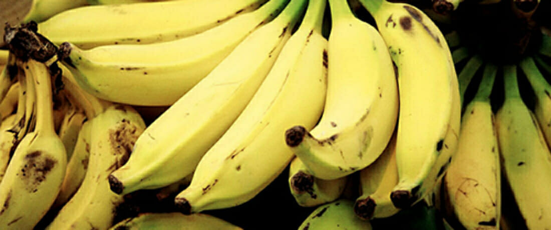 Families of Victims Petition U.S. Supreme Court to Hold Chiquita Accountable