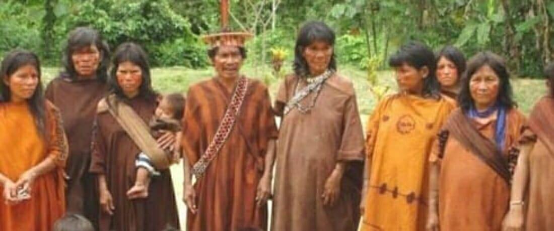 GTPPII de la CNDDHH exige medidas de protección para comunidades indígenas u originarias ante la amenaza de propagación del COVID-19