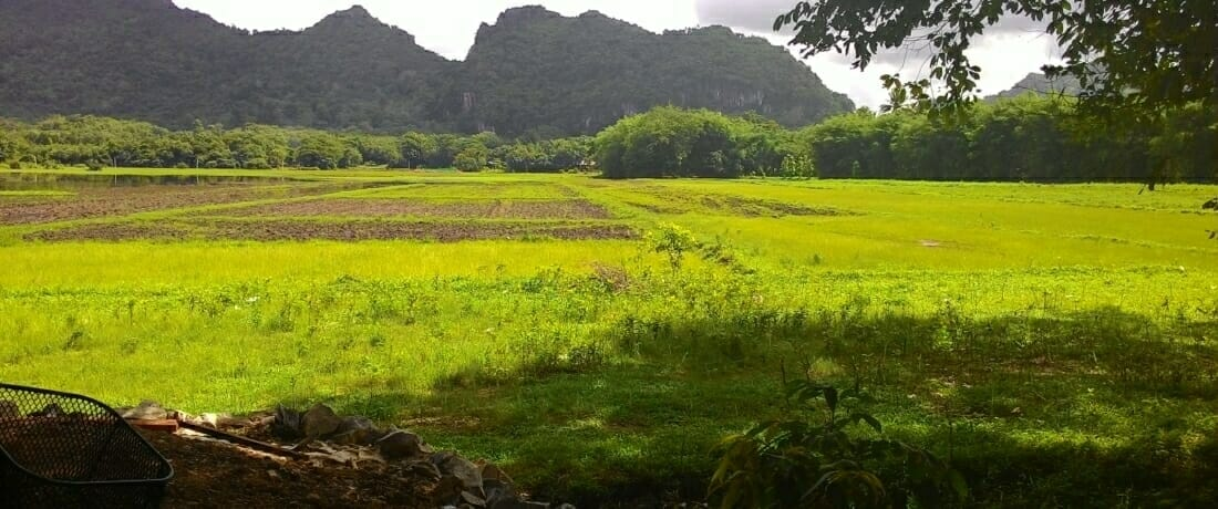 Asian Highway: a Grave Concern for the Karen People