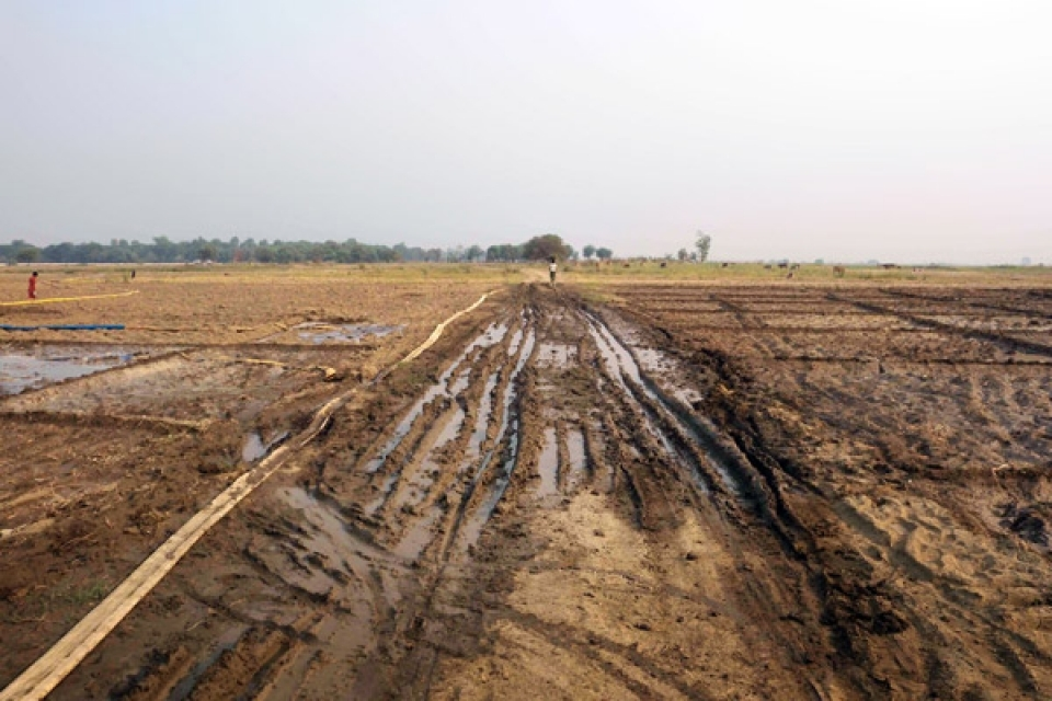 Yenanchaung Township, Magway Division.  Land Confiscation and Damage Without Compensation.  Construction vehicles carrying pipeline components and supplies on their way to the pipeline corridor have damaged family farmlands between Mong brook and the Irrawaddy River, near Mu Can village, Yenanchaung Township, Magway Division. The damage, pictured in April 2012, has severely impacted families' harvests of onions, beans, and rice crops necessary for their livelihoods. The companies paid compensation in May 2011 to farmers for the use and damage to land for pipeline construction for 100 feet around the pipelines, but have used and damaged farmland 150 feet around the pipeline without paying additional compensation.
