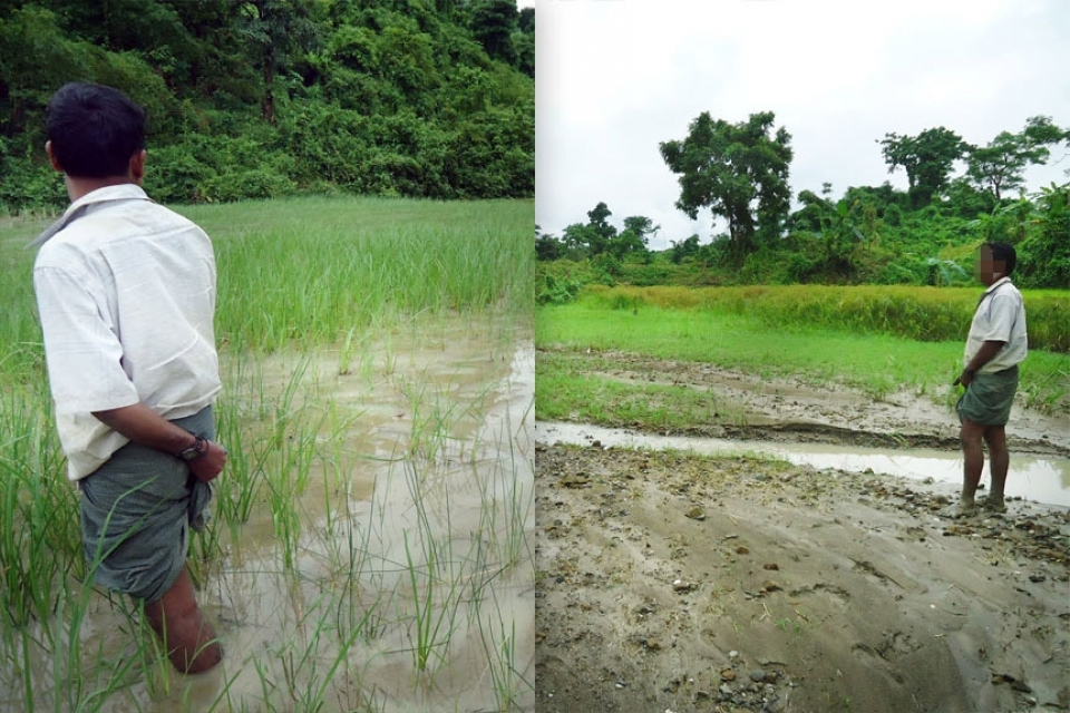 Mala Kyun and Gone Chwein villages, Kyak Phyu Township, Rakhine State. Livelihood Impacts: Destroyed Land in 2011 and 2012. Rocks and debris from Daewoo International's Onshore Gas Terminal (OGT) near Mala Kyun village have runoff on to local fields during rainstorms and in 2011 destroyed 46 families' rice paddies. Damage to the original 46 families' paddies continued in 2012, with mudflows destroying an additional 14 families' land in 2012. Farmers whose land was damaged or destroyed are presently able to harvest no more than 150-200 baskets of rice per year, down from upwards of 500 baskets of rice per year in the past. Compensation was paid to the 46 families in 2011, and additional compensation was paid in January 2013 to 58 families, including 38 families whose land was damaged in 2011.  In response to an inquiry by EarthRights International, Daewoo confirmed that evaluation teams assessed and compensated farmers whose land was damaged in 2012, while claiming that repeated damages to the original 46 families in 2012 was partially due to the absence of restoration work by villagers. Local villagers claim that performing restoration work is impossible without heavy machinery that has been requested and not provided by Daewoo International.