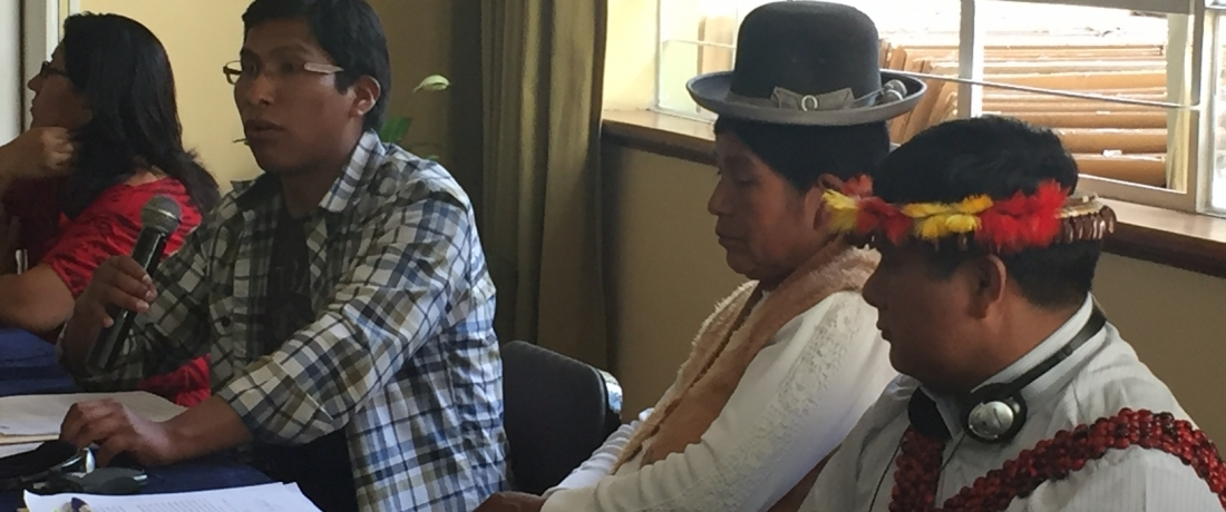 A Working Day with UN Special Rapporteur on the Rights of Indigenous Peoples in Lima