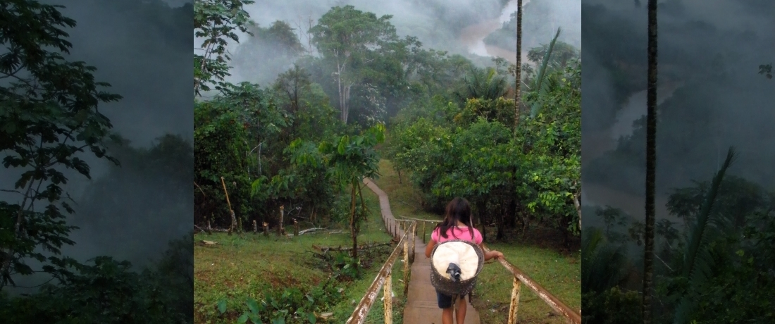 Our Work in Pictures: Protecting the Amazon & Its Peoples