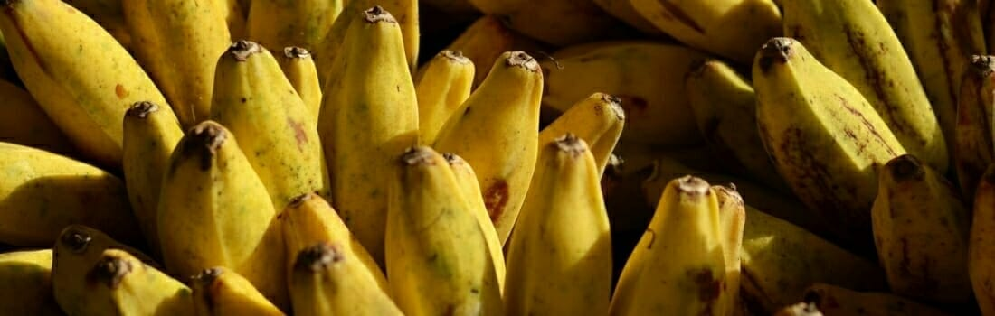 10 Things Chiquita Doesn't Want You To Know About Its Bananas