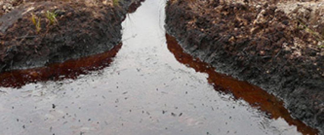 Shell Accepts Liability for Catastrophic Oil Spills in the Niger Delta