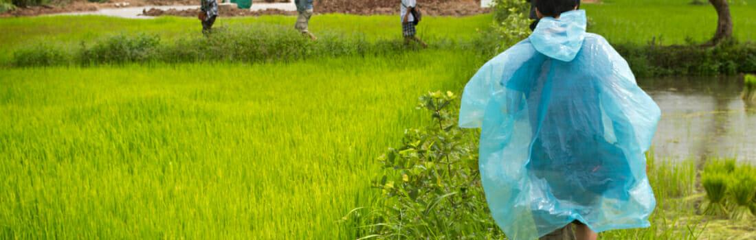 ERSM Students Meet Grassroots Heroes in Northeastern Thailand