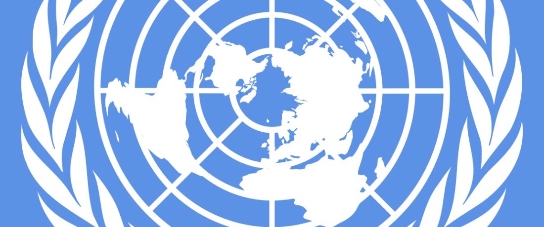 UN's Historic Business and Human Rights Treaty Resolution Falls Short in Providing Relief for Victims