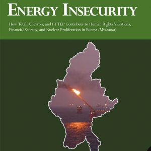 energy-insecurity.cover_.jpg
