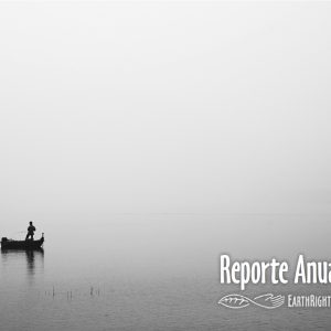 forro-reporte-anual-2013.jpg