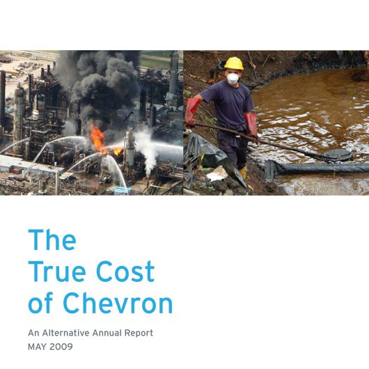 true-cost-of-chevron.jpg